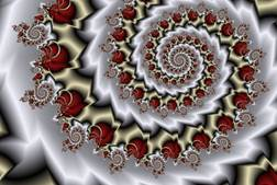 Image result for fractals equations in visual form